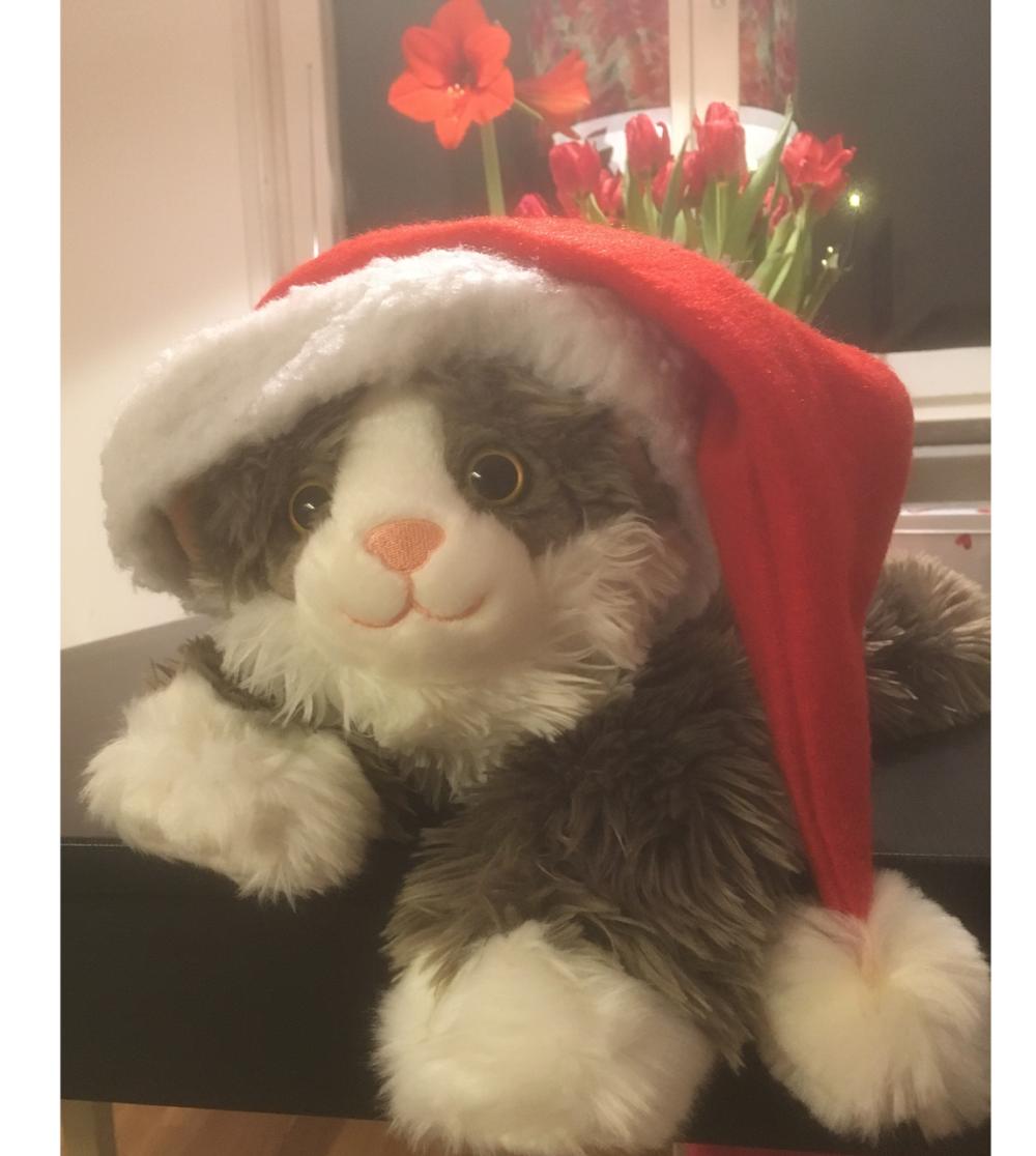 Katten pysen demensdocka Jul