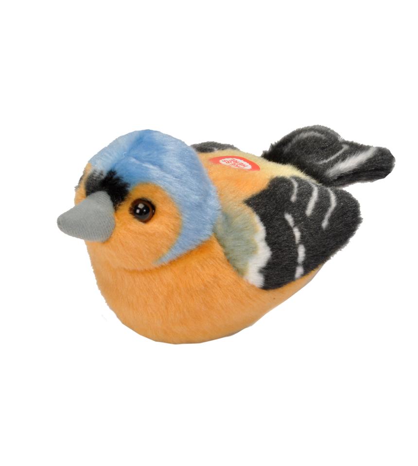 Bofink med läte fågel mjukdjur 6