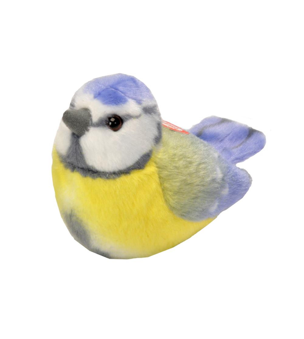 Blåmes fågel med läte mjukdjur 3