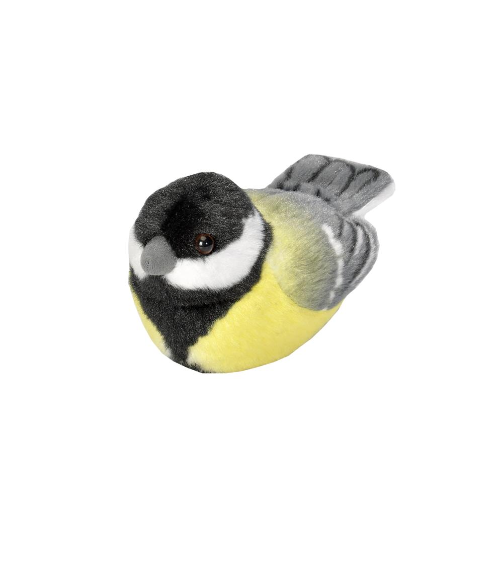 Talgoxe fågel med läte mjukdjur