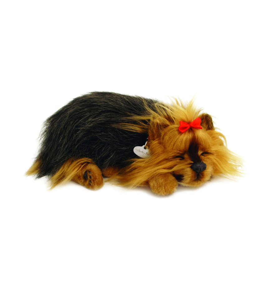 Digital hund Yorkshire terrier som andas